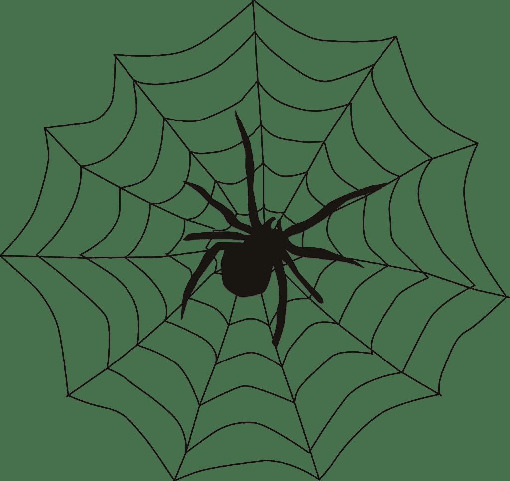 A pókok (spiderek) a Google keresőrobotjai